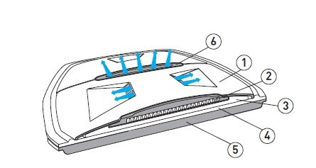 vue de la dorsale en coupe
